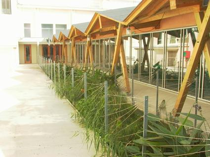 Formation biapi ecosystemz for Piscine de begles